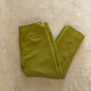 Studio Point Green Cropped Pants